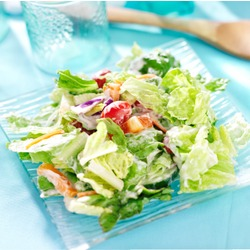 Vegetarian & Vegan Nutrition Consultant Diploma Level 3