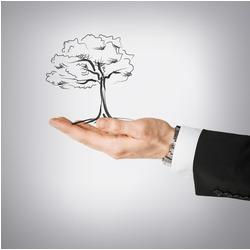 Environmental Legislation and Policy Diploma