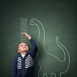 Child Development Diploma artwork