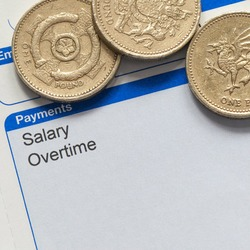 Introduction to Payroll Systems Diploma artwork