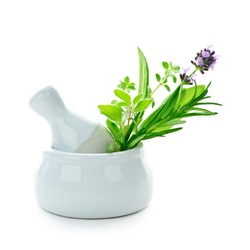 Master Herbalist (Phytotherapy) Diploma